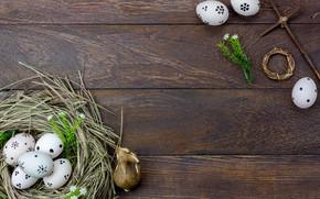 Картинка цветы, яйца, весна, Пасха, сено, wood, flowers, spring, Easter, eggs, decoration, Happy
