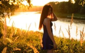 Картинка лес, трава, девушка, солнце, деревья, природа, река, платье, прическа, рыженькая, боке