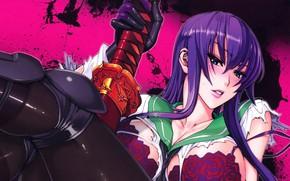 Картинка blood, anime, busujima saeko, hotd