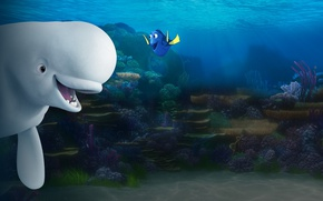 Картинка cinema, movie, animal, friendship, fish, film, whale, Dory, Finding Dory, beluga whale