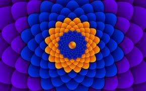 Обои цветок, движение, узор, объем, оптический обман