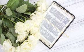 Картинка букет, Книга, бутоны, Белые розы