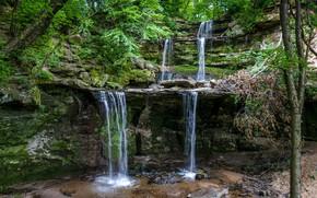 Картинка зелень, лес, деревья, скала, камни, водопад, мох, США, Minnesota