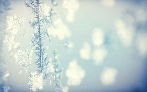 Обои холод, зима, фон, узор, текстура