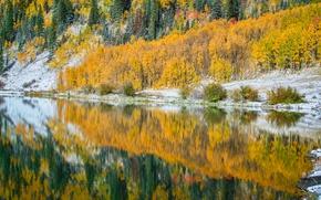 Картинка осень, деревья, озеро, отражение, Колорадо, США, Crystal Lake
