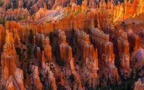 Обои США, каньон, долина, скалы