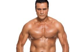 Картинка боец, мышцы, рестлер, MMA, WWE, Alberto Del Rio, Альберто-дель-Рио