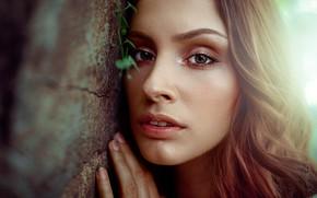 Картинка взгляд, крупный план, лицо, стена, модель, рука, портрет, макияж, прическа, шатенка, боке, Damian Piórko