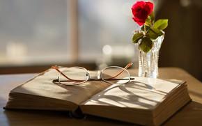 Картинка роза, очки, книга