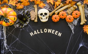Обои кости, bones, skull, Хэллоуин, Halloween, тыква, паутина, череп, pumpkin