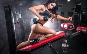 Картинка girl, sexy, fitness, gym