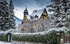 Картинка снег, елки, зима, фото, деревья, особняк, Clo Dallas