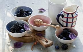 Картинка ягоды, черника, ежевика, йогурт, Anna Verdina