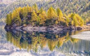 Картинка осень, пейзаж, природа, красота