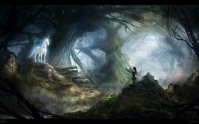 Картинка лес, камни, женщина, встреча, единорог, зов, UNICORN