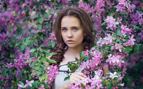 Картинка взгляд, ветки, лицо, настроение, весна, яблоня, цветение, цветки, косы, Даша, Анастасия Добровольская