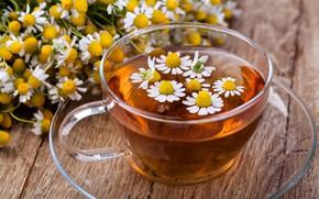 Обои чай, ромашка, цветки