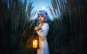 Картинка взгляд, девушка, камыши, настроение, платье, фонарь, голубые волосы, Valentina Díaz