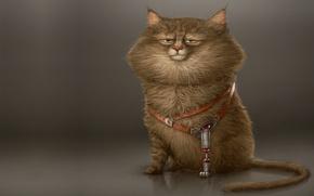 Обои кот, характер, настроение, лапа, минимализм, кошак, арт, протез, Alexandre Blain