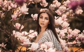 Обои ветки, цветение, девушка, настроение, дерево, магнолия, цветки, взгляд, портрет