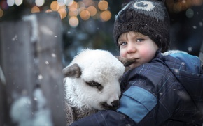 Картинка боке, животное, ребёнок, зима, ягнёнок, мальчик