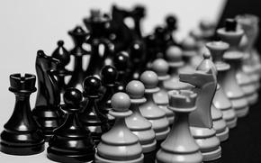 Картинка шахматы, пешка, фигуры, ладья