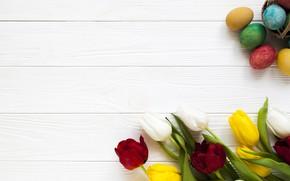 Картинка яйца, весна, Пасха, тюльпаны