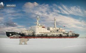 Обои медведь, Арктика, Властелин Арктики, Денис Ерёменков, Denis_er, ледокол Ленин, полярный медведь, ледокол
