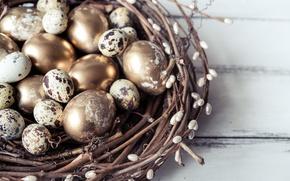 Обои перепелиные яйца, весна, golden, ветки, decoration, верба, гнездо, Easter, Пасха, happy, яйца крашеные, spring, eggs