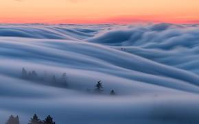 Обои Калифорния, небо, утро, туман