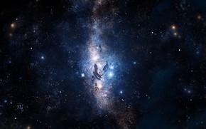 Картинка звезды, рыбы, под водой, ночное небо, Y_Y