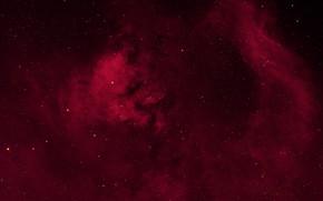 Картинка космос, Звёзды, NGC 7822, NGC 7762, CED 214