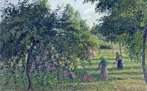 Обои пейзаж, картина, сад, Камиль Писсарро, Яблони в Эраньи