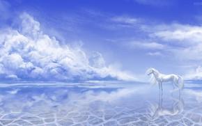 Картинка небо, вода, природа, единорог, by Alaiaorax