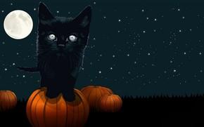 Картинка ночь, праздник, Хеллоуин
