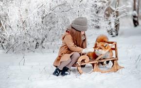 Картинка зима, снег, настроение, лиса, девочка, рыжая, друзья, санки, Мария Стрелкова
