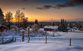 Картинка зима, лес, природа, Норвегия, Norway, Lillehammer