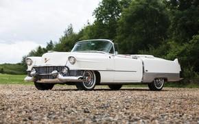 Обои Eldorado, Cadillac, white, 1954, convertible