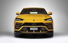 Обои New, VAG, Lamborghini, LED, Yellow, Urus, Light