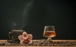 Картинка кофе, зерна, чашка, напитки, виски, орхидея, рюмка