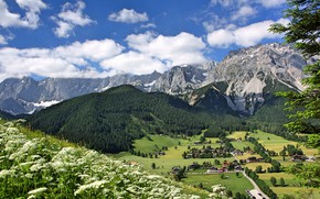 Картинка цветы, горы, Австрия, долина, деревня, Альпы, панорама, Austria, Alps, Штирия, Styria, Ramsau am Dachstein, Рамзау-ам-Дахштайн