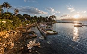 Картинка море, небо, солнце, облака, деревья, камни, пальмы, берег, побережье, Франция, яхты, лодки, причал, Provence, Antibes