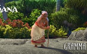 Картинка cinema, flower, woman, island, movie, film, animated film, vegetation, hana, animated movie, Moana, gramma Tala
