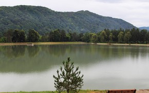 Картинка вода, озеро, парк