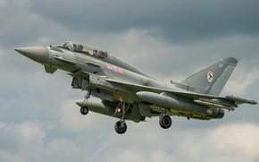 Обои полёт, летит, серое небо, Eurofighter Typhoon, боевой самоёт