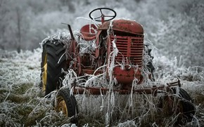Картинка иней, природа, трактор