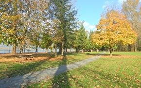 Картинка Осень, Парк, Fall, Листва, Дорожка, Park, Autumn, Colors, Листопад, Leaves, Path