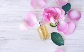 Картинка лепестки, rose, wood, pink, petals, розовые розы, spa, oil