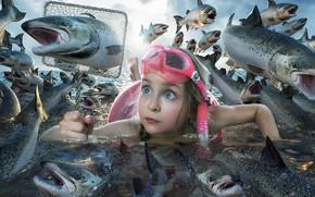 Обои рыбы, ситуация, девочка