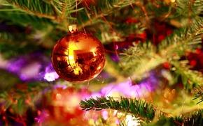 Картинка дождик, оранжевый, иголки, отражение, настроение, green, елка, новый год, шар, new year, orange, Xmas, purple, …